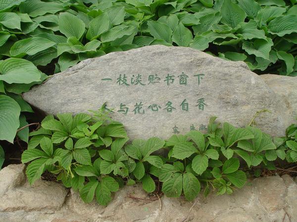 Надписи - непременный элемент каждого китайского сада
