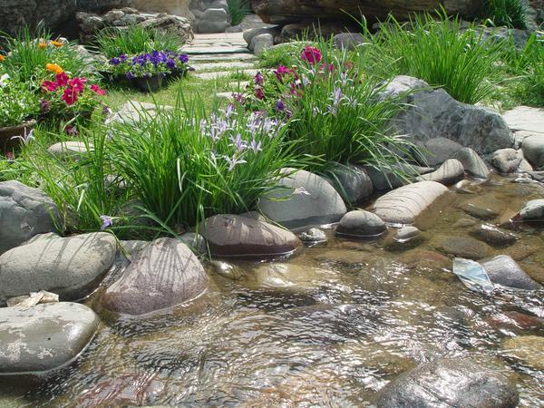 Травянистые растения, цветы - неотъемлемая часть сада