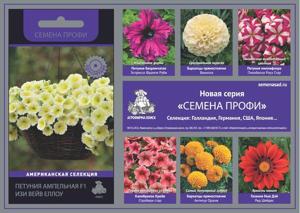 Достижения современной селекции подарили миру удивительное многообразие цветов