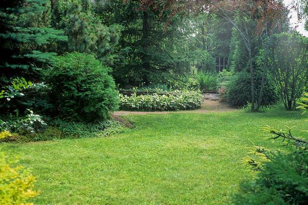 Даже небольшой по площади газон кажется обширным, если мы не можем охватить его весь одним взглядом