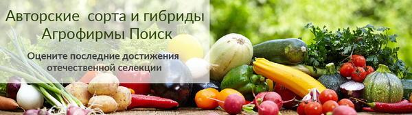 Сорта и гибриды Авторской серии - реальный ответ на запросы российских овощеводов