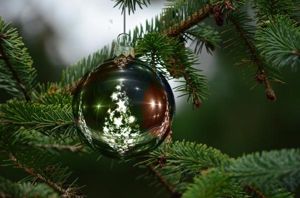 Елка - непременный атрибут Нового года и Рождества
