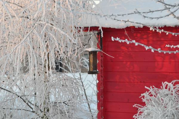 Следует продумать, что будет акцентировать на себе внимание в зимнем саду