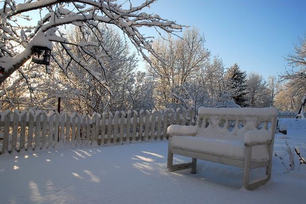 Зимой в саду снег становится главным аксессуаром
