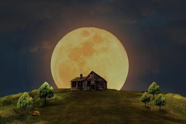 """Жить """"по Луне"""", быть может, проще?"""
