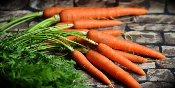 Морковь: полезны и вершки, и корешки