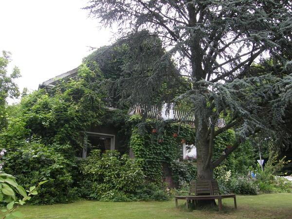 Частные сады на востоке Германии зачастую выдержаны в естественном стиле