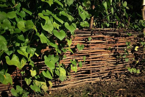 Плетень - старинный вид садового ограждения