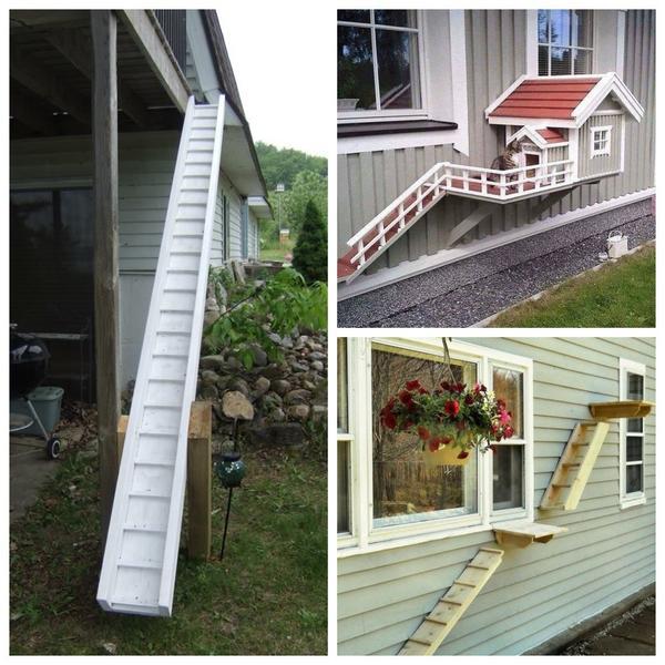 Отдельный вход и персональная лестница - хороший подарок для кота, который гуляет сам по себе