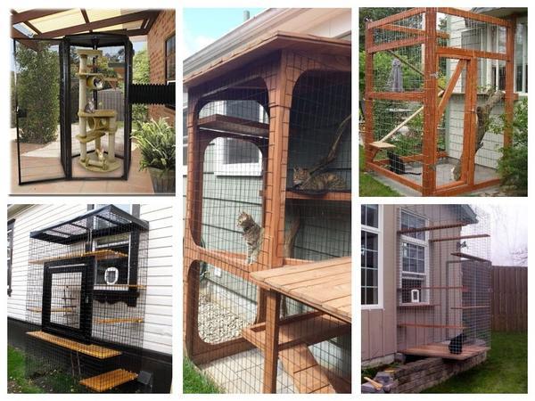 Прогулочные террасы и балконы для пушистых домоседов