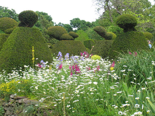 Хозяин этого сада любил сочетать то, что по классическим канонам садового искусства считается несочетаемым