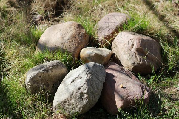 В качестве силовой тренировки можно собирать камни для ландшафтного дизайна