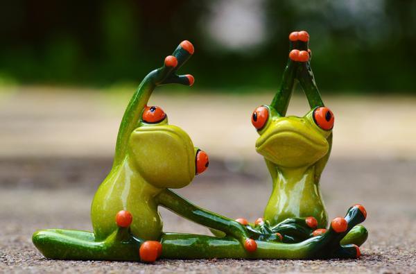 Накопленные за сезон эко-фитнеса здоровье и положительные эмоции помогут вам цвести и хорошеть