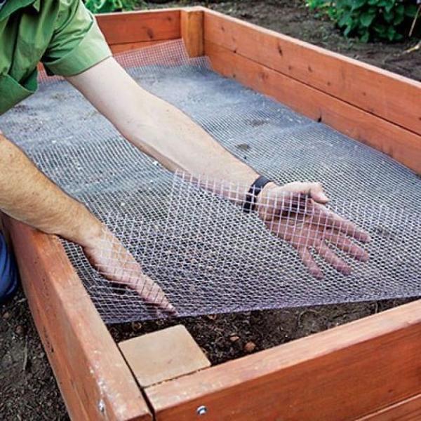 Дно грядки желательно застелить мелкоячеистой сеткой. Фото с сайта usamodelkina.ru