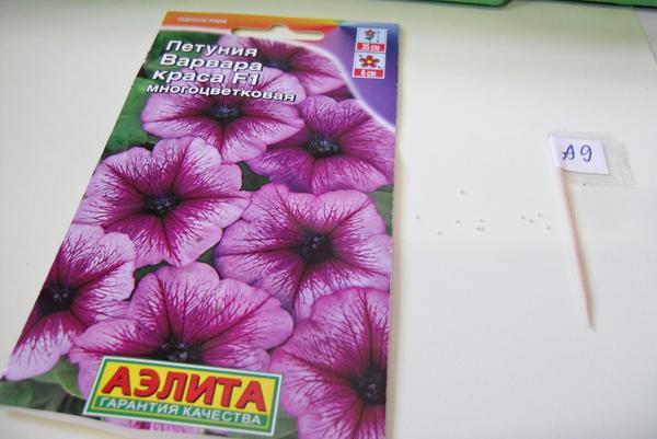 Семена в гранулах, 11 шт.