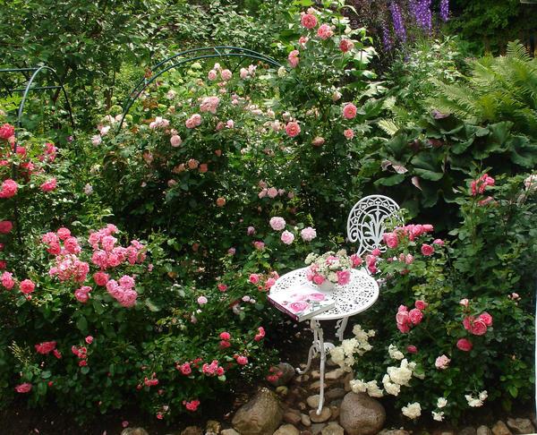 Романтический уголок с розами