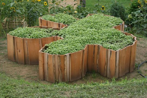 Грядка не обязательно должна быть прямоугольной. Фото с сайта pinterest.com