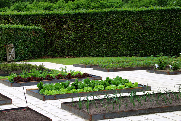 Огород в регулярном стиле. Фото с сайта www.florapassionis.com