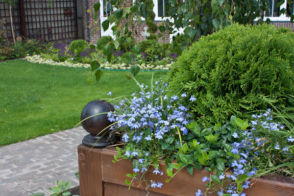 Контейнерные посадки - отличный способ создания цветочных композиций