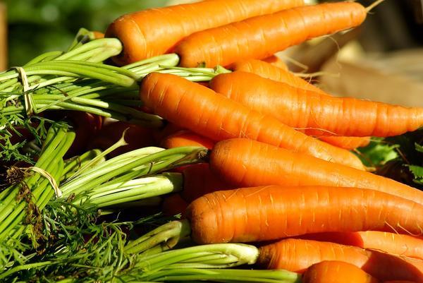 Привычная морковь - эффективное средство для лечения кожных заболеваний