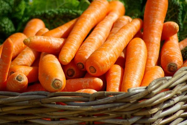Свежая морковь полезна для зрения