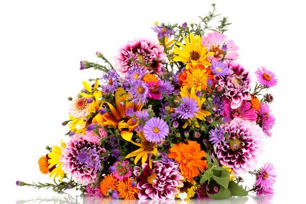 bb12cde2f3 В школу с цветами: идеи для букета к 1 сентября