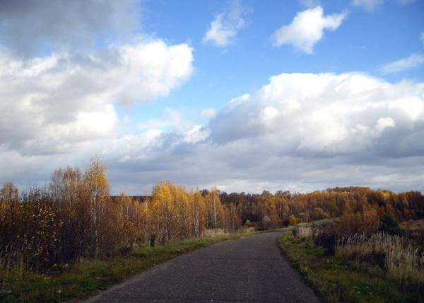 Дорога у каждого своя. Фото автора