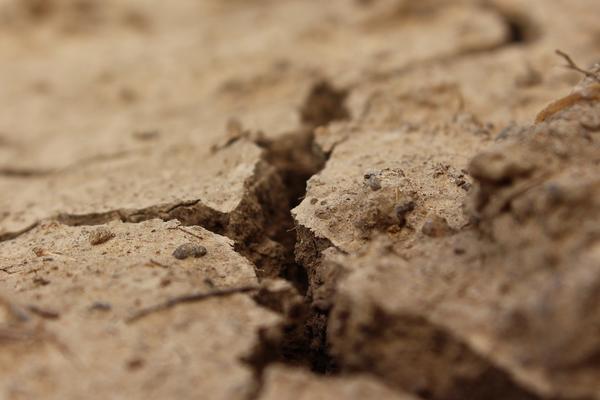 Глинистая почва заболачивается осенью, но иссушается летом