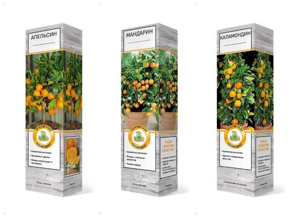 """В интернет-магазине Агрохолдинга """"Поиск"""" цитрусовые представлены в широком ассортименте"""
