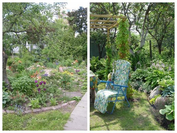 В плодовом саду можно создавать разнообразные мини-садики из многолетников