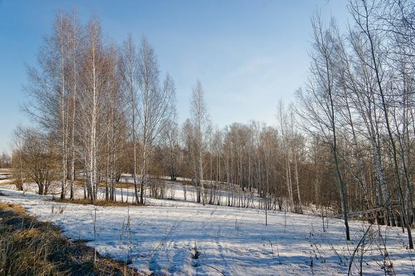 Март: уже не зима, еще не весна