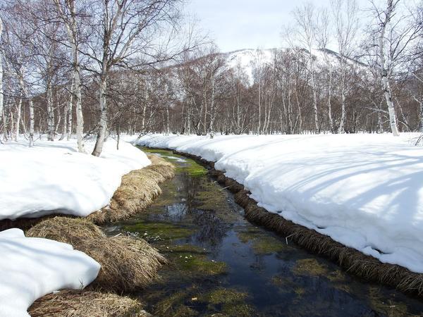 Если в марте вода не течет - в апреле трава не растет