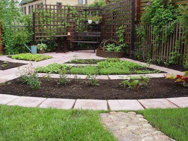 Современный огород приобрел новый облик и новое содержание