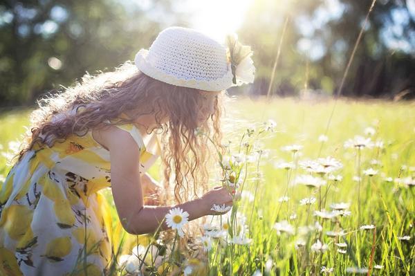 Солнечный летний луг - счастливые воспоминания детства. Изображение Jill Wellington с сайта Pixabay