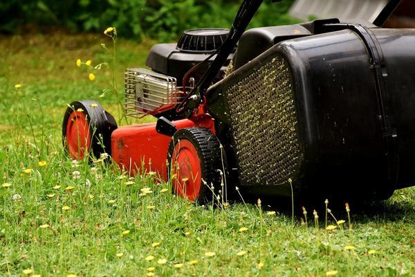 Газонокосилка стала привычным атрибутом загородной жизни