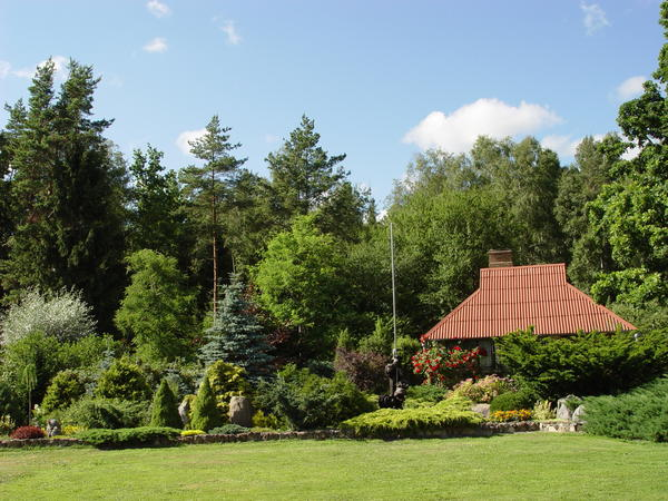 Дом, окруженный деревьями и кустарниками