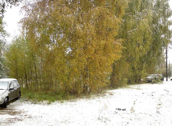 Осень и зима вчера повстречались