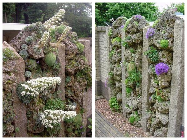 Рокарий как часть садового ограждения
