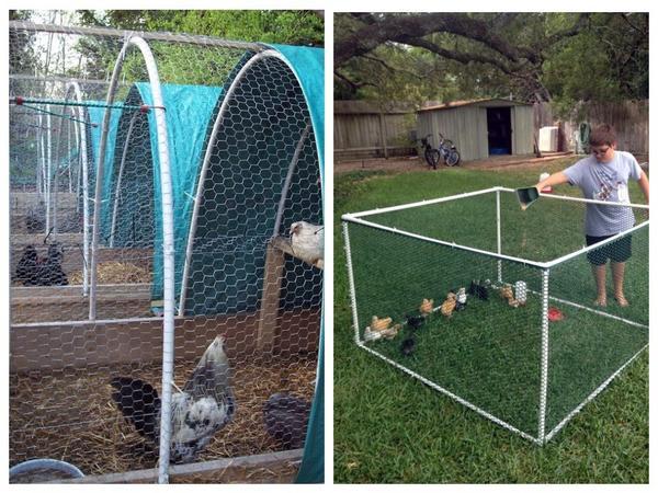 Нужен летний вольер для кур и цыплят? Трубы пвх выручат!