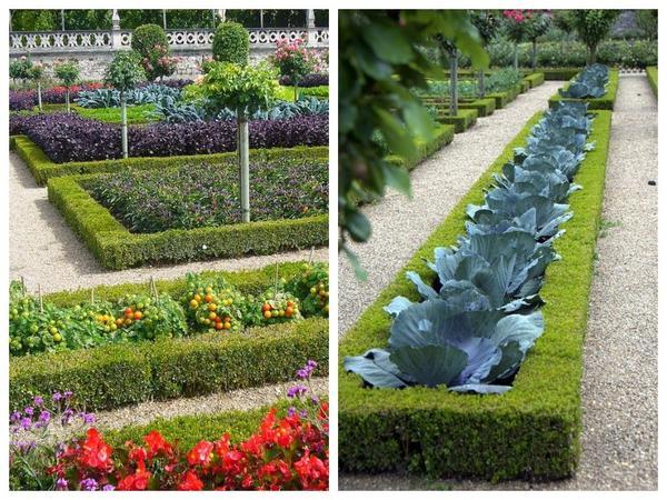 Декоративные огороды уже не одно столетие назад украшали территории дворцовых парков и монастырей