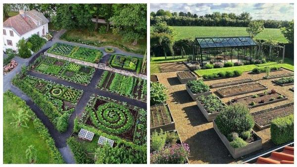 Что общего у старинных и современных декоративных огородов?