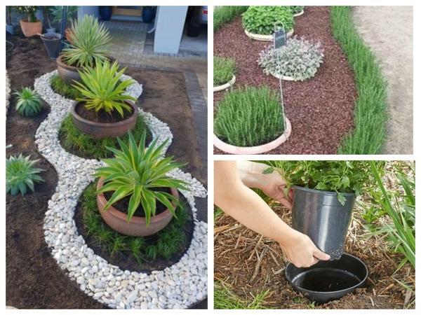 Преобразить такой цветник очень просто - достаточно лишь заменить один горшок с растением на другой