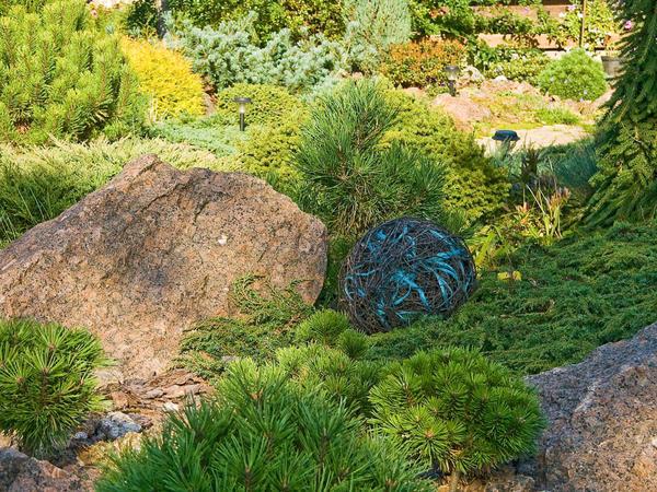 Корзина из камней для сада своими руками