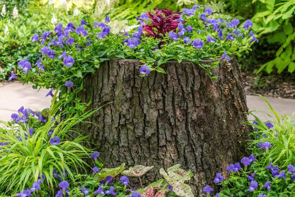 Оригинальный цветочный контейнер можно сделать своими руками и почти бесплатно