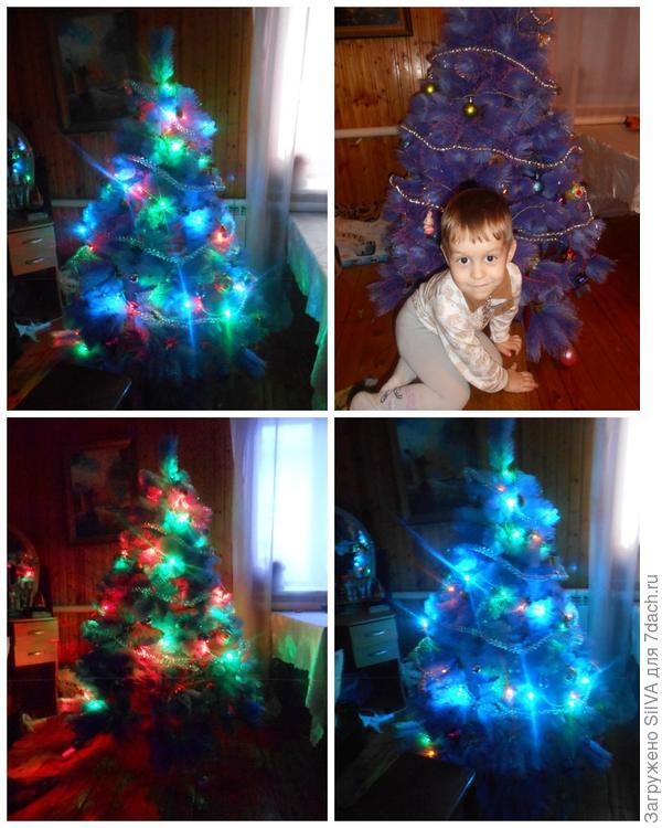 ночные огни Рождественской елки