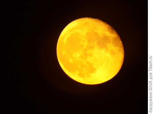 луна из окна
