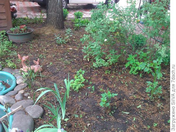 удобрение почвы скорлупой