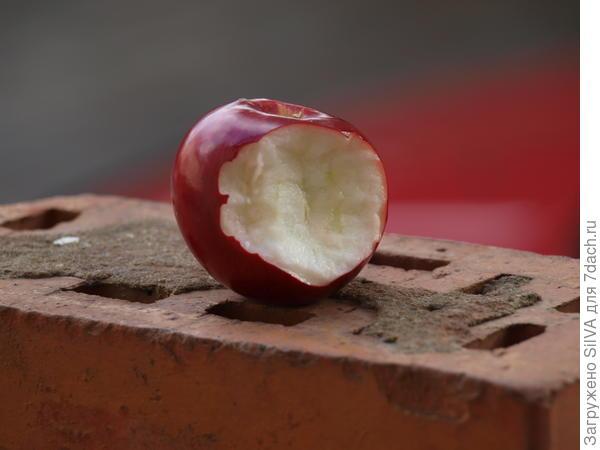 мякоть спелого яблока