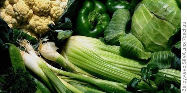 овощи(фото сети интернет)