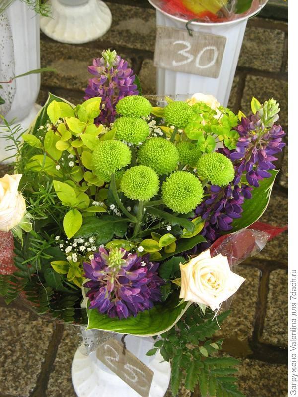 цветы12